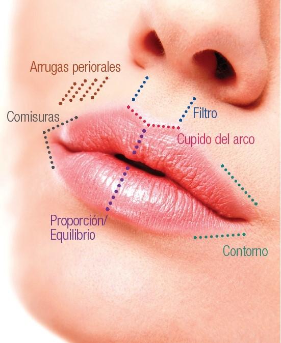 Clinica Dental Fidentzia en Alicante